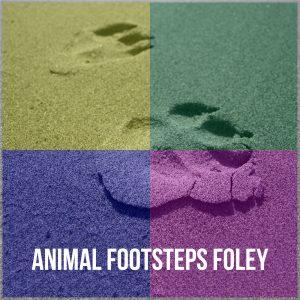 TWRSFX025 - Animal Footsteps Foley