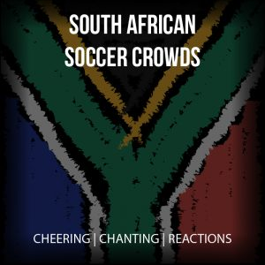 South African Soccer Crowds